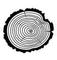 wooden cut of a tree log vector image vector image