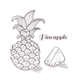 Engraving pineapple vector image