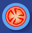 fresh red tomato slice icon with shadows vector image vector image