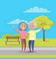 Happy grandparents day senior couple walk together vector image