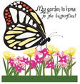 Home To Butterflies vector image vector image