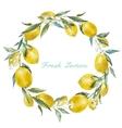 Lemon frame vector image