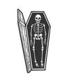 skeleton in coffin sketch vector image vector image