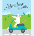 adventure awaits card with cute rat vector image vector image