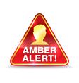 amber alert icon vector image