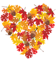 fall heart with leaves and acorns vector image vector image