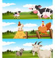 Farm animals living on farm vector image vector image