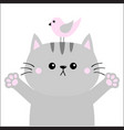 gray cat ready for a hugging pink bird open hand vector image