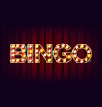 bingo banner casino glowing lamps for vector image vector image