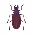 Bug icon cartoon style vector image vector image