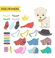 Dog jewelry clothing icon set vector image vector image