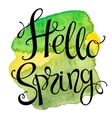 Hand drawn lettering Hello Spring vector image vector image