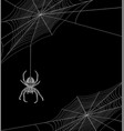 helloween background with spider vector image