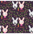 Rabbit Pattern vector image