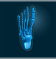 Simple x-ray picture of foot in blue colors