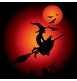 hallooween witch vector image
