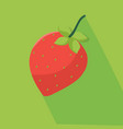fresh strawberry and green background vector image