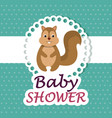 baby shower card with cute chipmunk vector image vector image