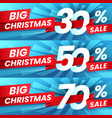 christmas sale discount xmas advertising sales vector image vector image