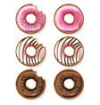 donuts realistic 3d detailed desserts vector image vector image