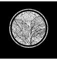 floral logo 01 grunge vector image vector image