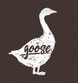 goose silhouette for dark background with the vector image