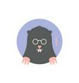 icon black mole vector image