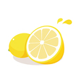 icon fruit vector image vector image