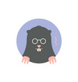 icon of black mole vector image vector image