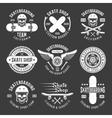 Skateboarding Light Emblems vector image vector image
