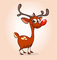 cartoon reindeer rudolph vector image vector image