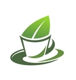 Herbal tea with a green leaf vector image vector image