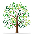 Money tree isolated vector image