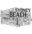 beaches for fun in sun text word cloud concept vector image vector image
