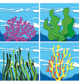 Coral reef under the sea vector image vector image