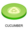 cut cucumber icon isometric style vector image