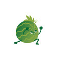 flat watermelon doing stretching or yoga vector image vector image
