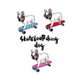 french bulldog on skateboard vector image