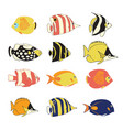 icon set tropical reef fishes isolated vector image