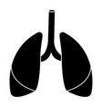 lungs human organ vector image