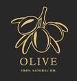olive with leaves on dark background olive logo vector image vector image