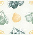 Seamless pattern with ink hand drawn bergamot