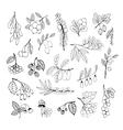 Set of garden and wild hand-drawn sketch berries vector image vector image