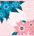 tropical natural flowers vector image