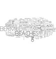 beaches of bermuda text word cloud concept vector image vector image