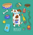 cats and dogs border set front view and rear view vector image