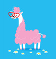 cute lama in glasses in shape of a heart with pink vector image