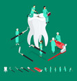 dental care concept and elements 3d isometric view vector image