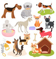 dogs different breeds puppy set cute pets vector image vector image
