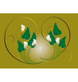 Flowers white Callas on a green background vector image vector image